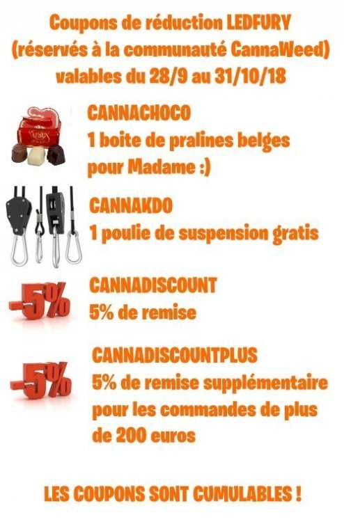 COUPONS CANNAWEED OCTOBRE 2018.jpg