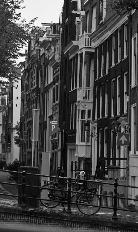 velo amsterdam day_1.jpg