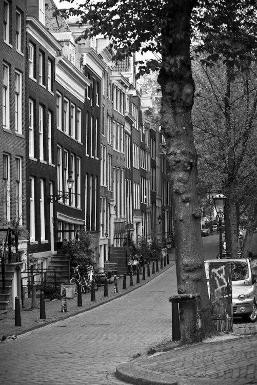 velo amsterdam day_2.jpg