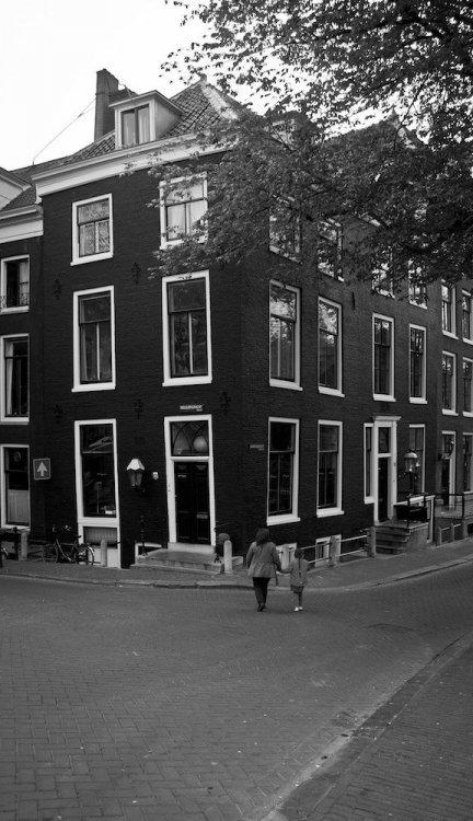 amsterdam daylight regulieer.jpg