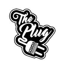 the plug.jpg
