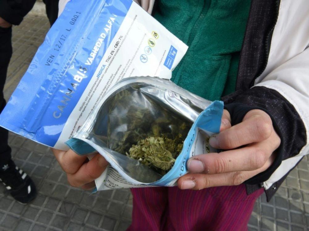 Cannabis: en Uruguay, une législation pionnière qui avance pas à pas