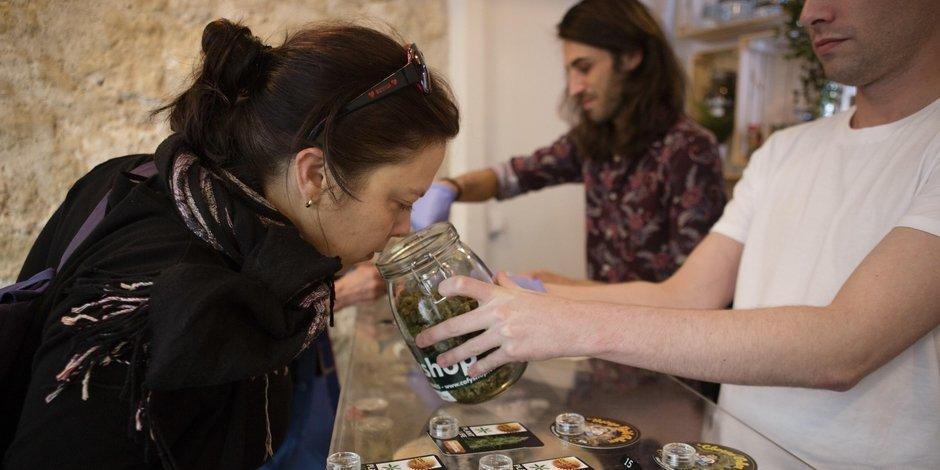 Il y a désormais une fédération du cannabis en Belgique !