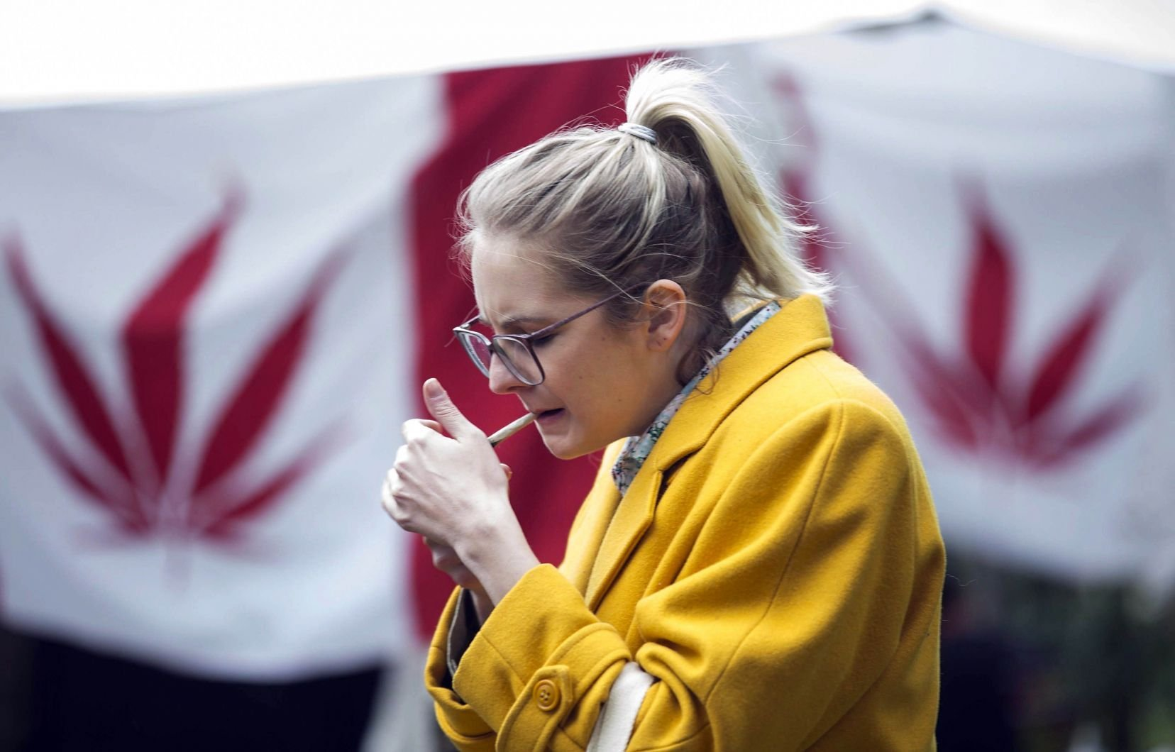 Les risques de la fumée secondaire du cannabis sont minimes