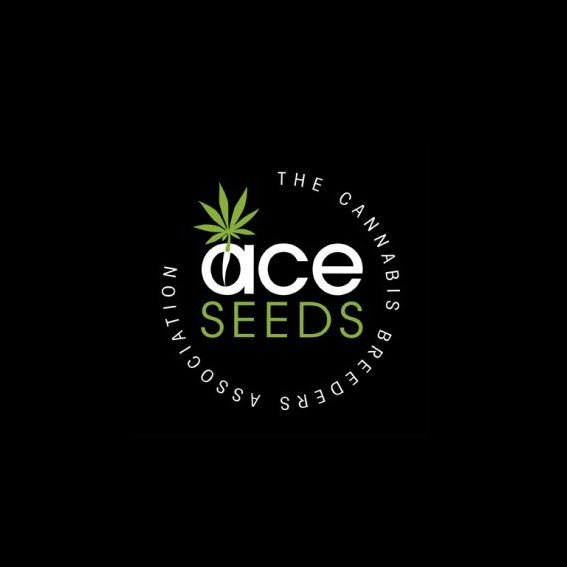 ACE Seeds.jpg