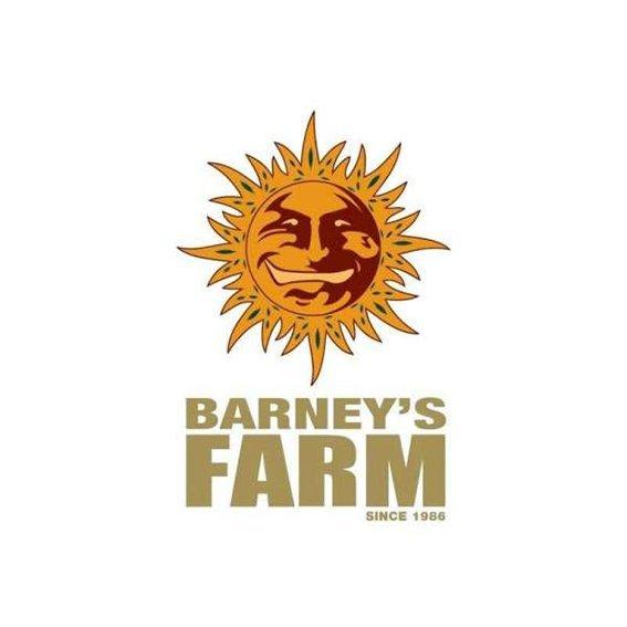 BarneySFarm.jpg