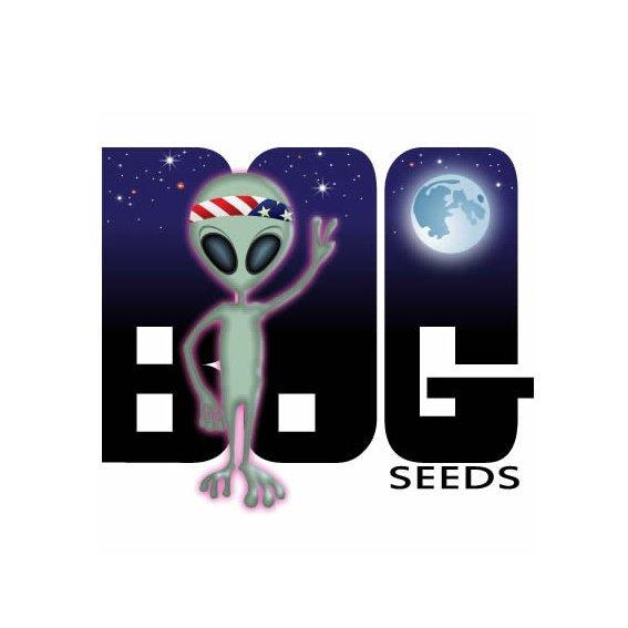 B.O.G Seeds