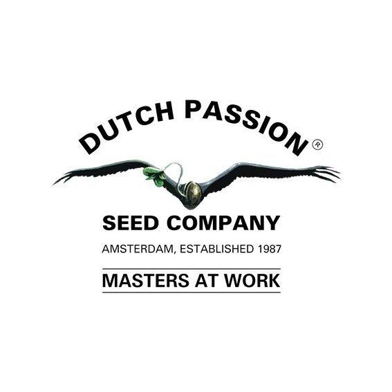 DutchPassion.jpg