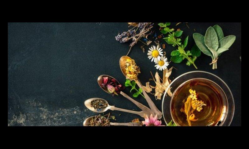 La nature-pharmacie, phytothérapie de la ganja, ou comment soigner et protéger nos plantes par les plantes ?