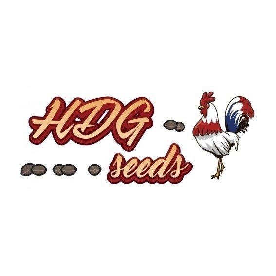 HDG Seeds