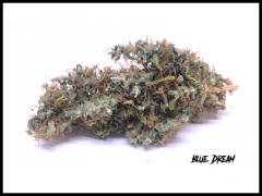 Blue dream / HSO
