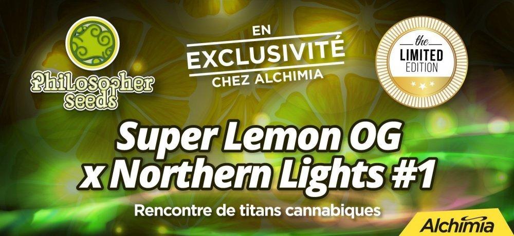 1500px-lemonOGxNL1-fr.jpg
