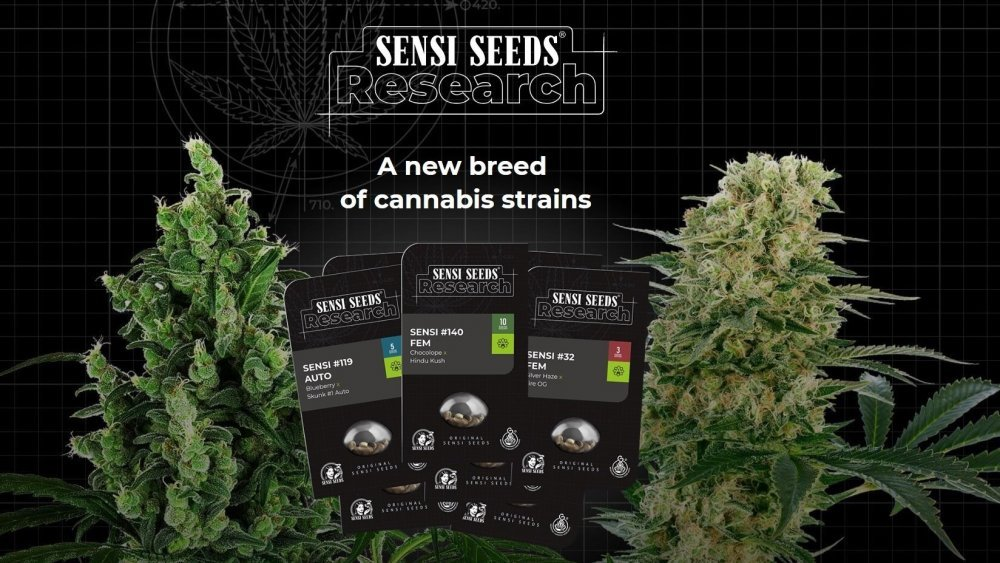 SensiSeedsResearch_header.jpg