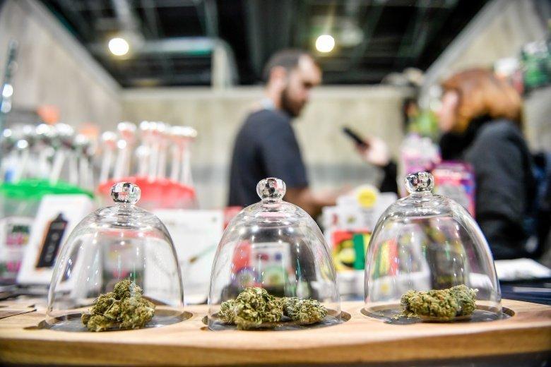 Belgique - Cannabis CBD: la fin de l'Eldorado?