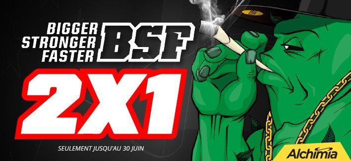 bsf-2x1-1054.jpg