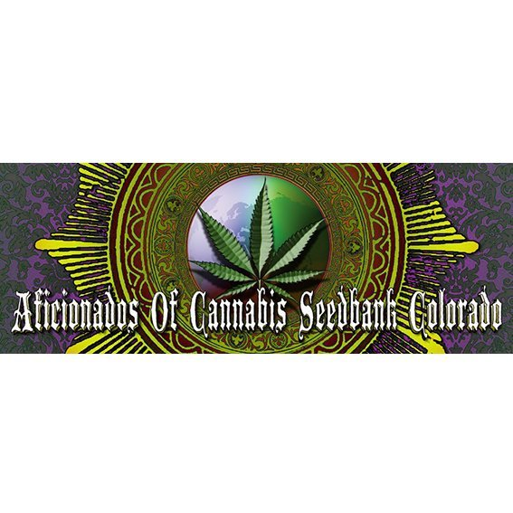 Aficionados Of Cannabis Seedbank Colorado
