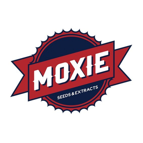 Moxie Seeds & Extracts