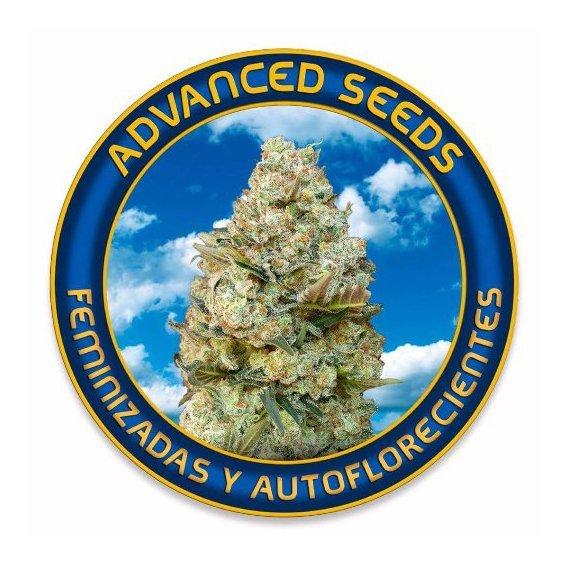 AdvancedSeeds.jpg