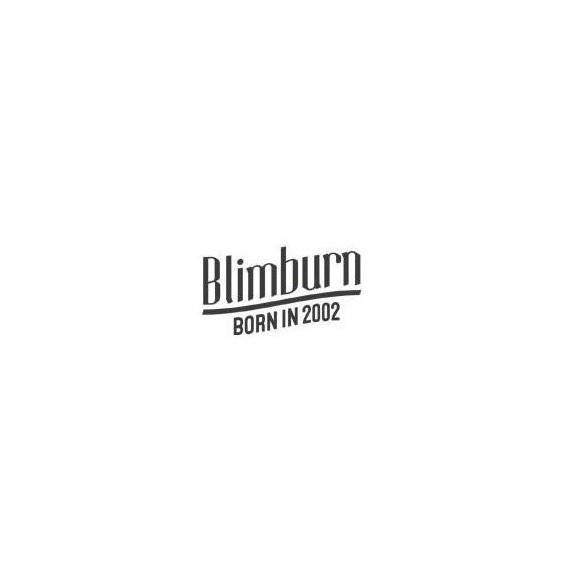 BlimBurn.jpg