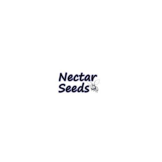 Nectar Seeds