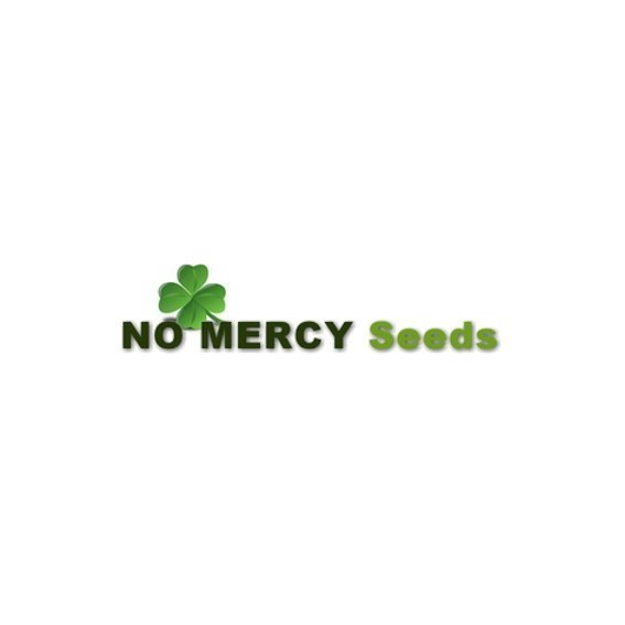 NoMercy.jpg