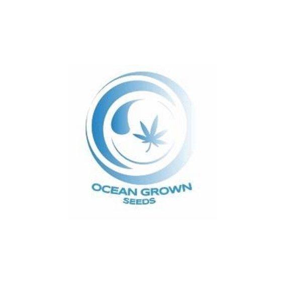 Ocean Grown Seeds