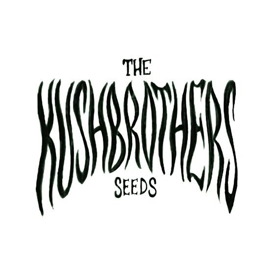 TheKushbrothersSeeds.jpg