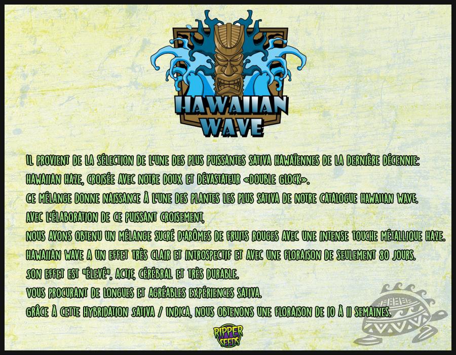 hawaainewave.png.225a758a965a8cec32967bbb3af0d834.png