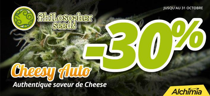 web-cheesy-fr.jpg
