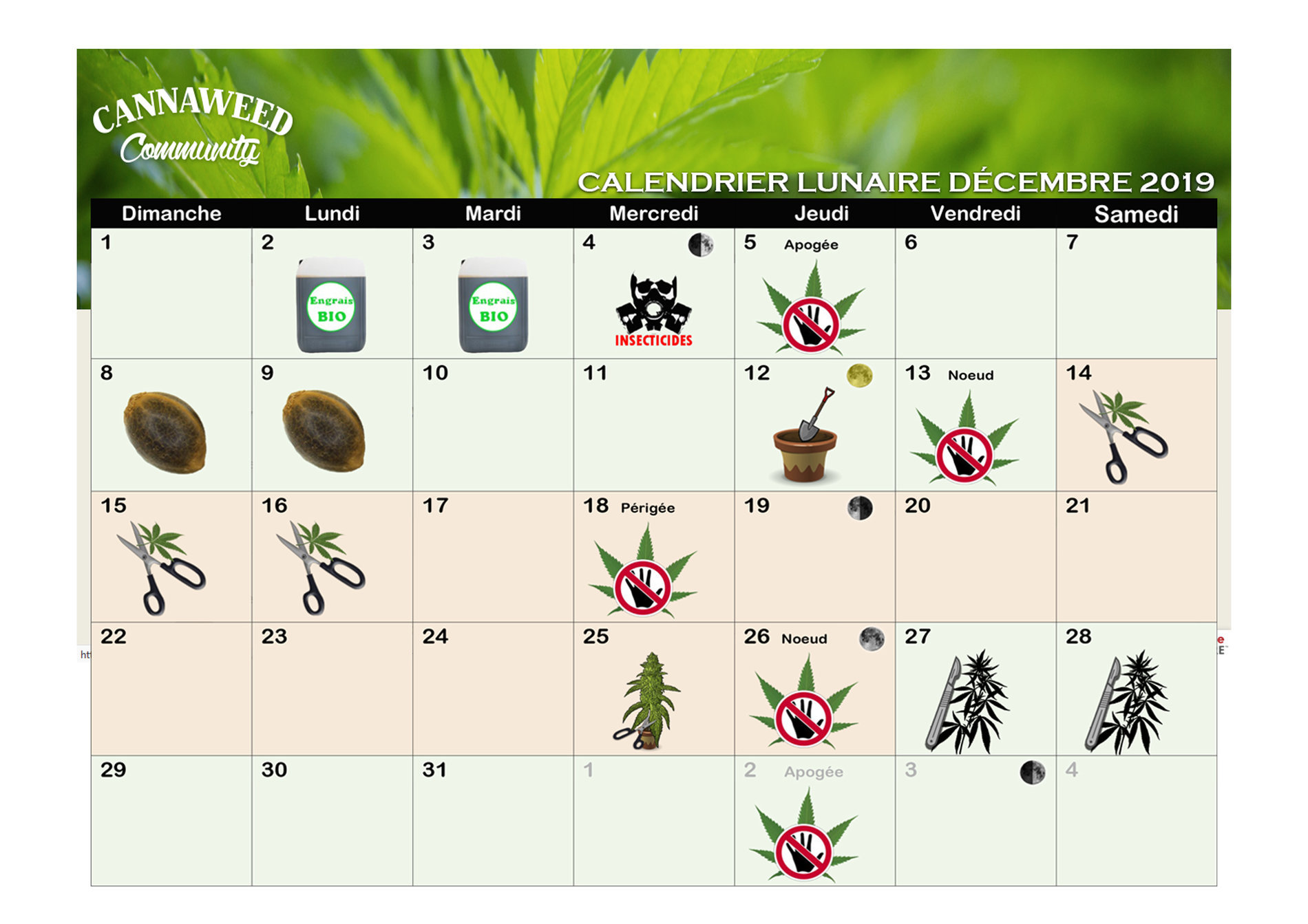 Calendrier Lunaire   Proposez vos guides / tutos   CannaWeed