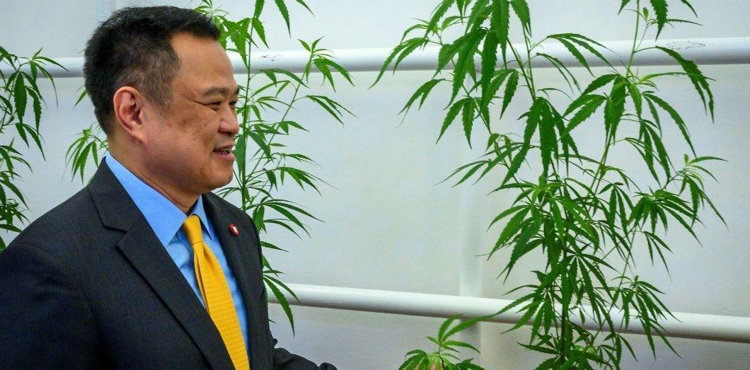 Comment la Thaïlande gère la légalisation progressive du cannabis