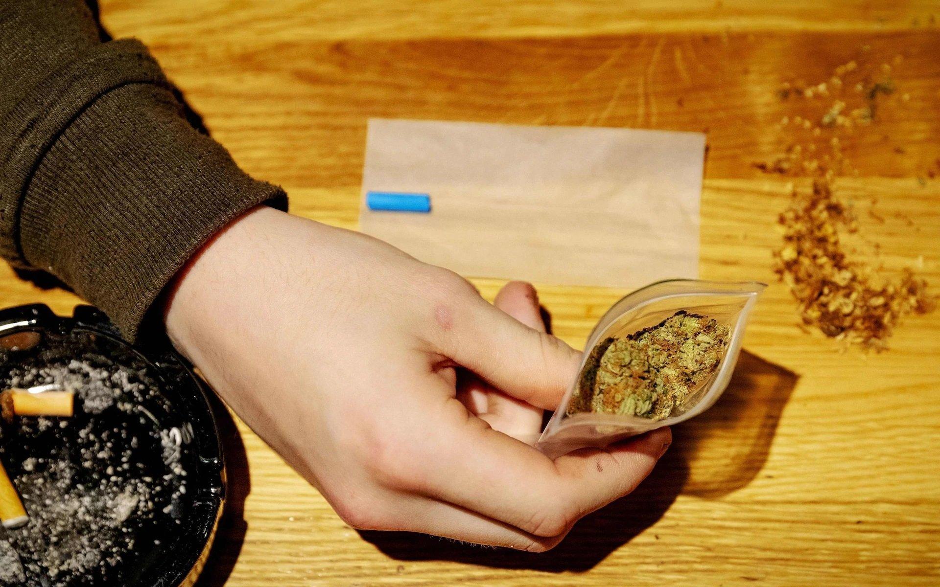 Les Pays-Bas s'orientent vers la légalisation de la production de cannabis avec un essai de quatre ans en coffeeshops