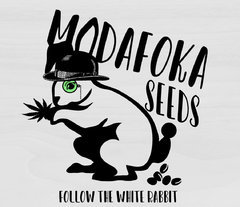 MODAFOCKER-logo_auto.jpg