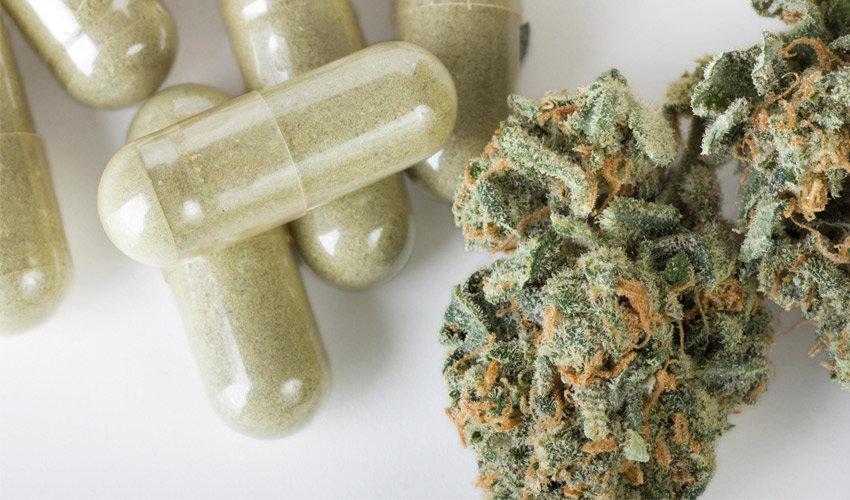 Mike Tyson veut assurer un meilleur dosage du cannabis grâce à l'impression 3D