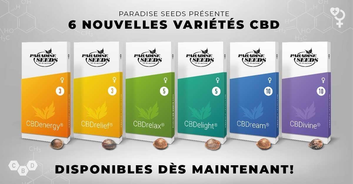 large.6-CBD-Varieties-1200x628-FR.jpg