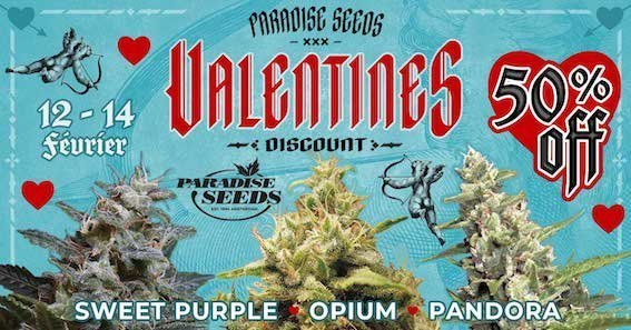 large.Valentines-FR.jpg