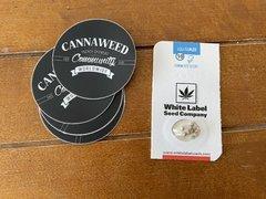 White Label Seed Company - Gelato #420