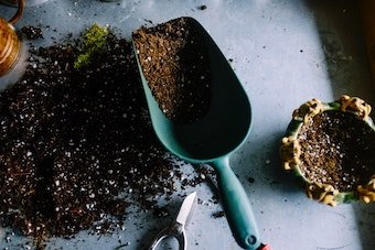 Can_you_make_your_own_soil_for_cannabis_plants_.jpg