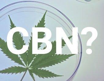 CBN.jpeg