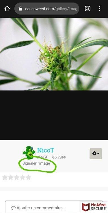 Screenshot_20210527-091112_Chrome.thumb.jpg.265b7d7036a305f2a28970c7f05f81f9.jpg