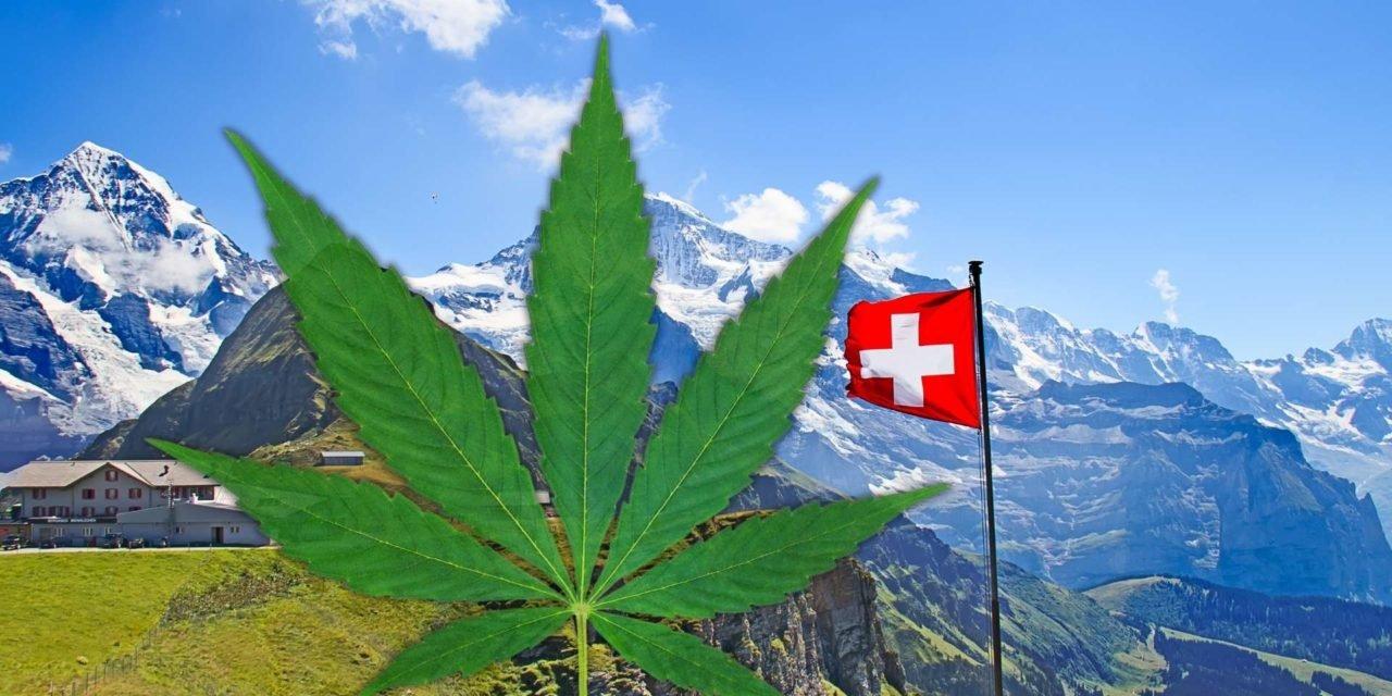 Suisse - Bâle se prépare avec d'autres villes suisses à la vente régulée de cannabis