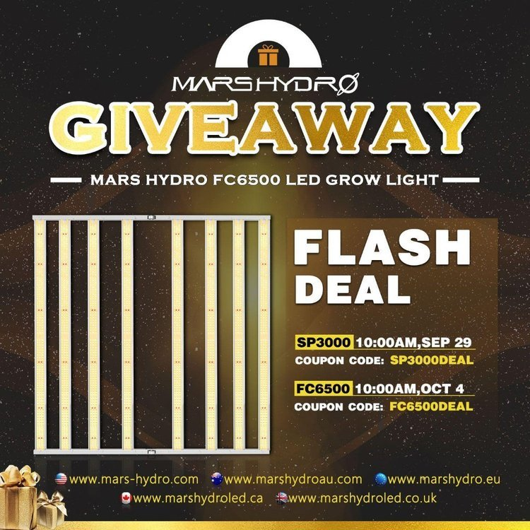 FC 6500 Giveaway - Mars Hydro.jpeg