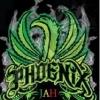 Phoenix Weed