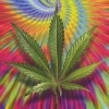 over-weed