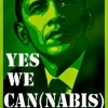 "#Perpépwet ""Yes ! We can(nabis) !"" [400W: Zzz...] [600W: FLO+15] [OG Kush, Moby Dick, White Widow] [Terre] - dernier message par kannapwet"
