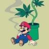 Législatives : le cofondateur de Cannabis sans frontières face à Dupont-Aignan dans l'Essonne - dernier message par Nauthiz